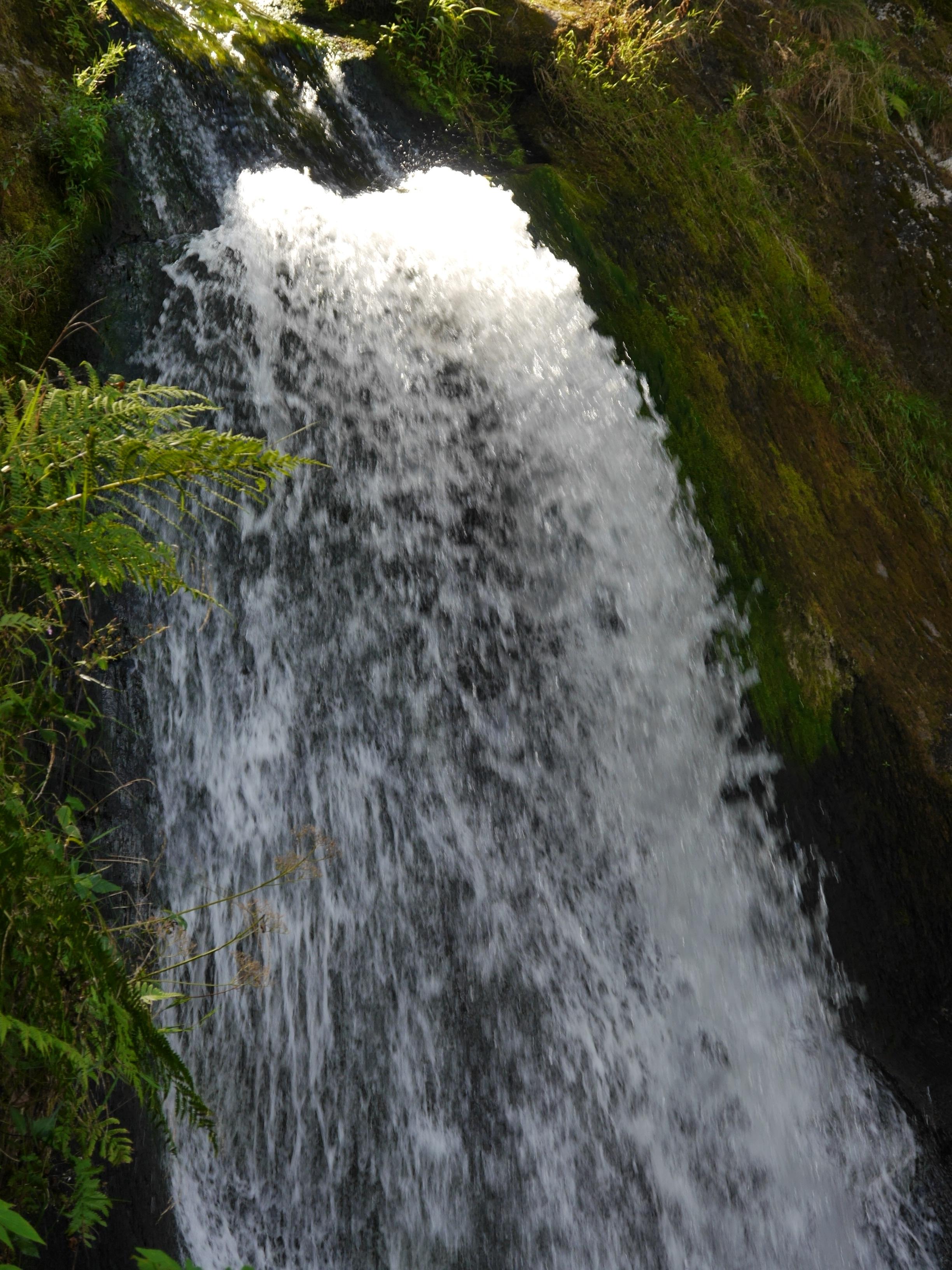 3 Triberg Wasserfälle (12)