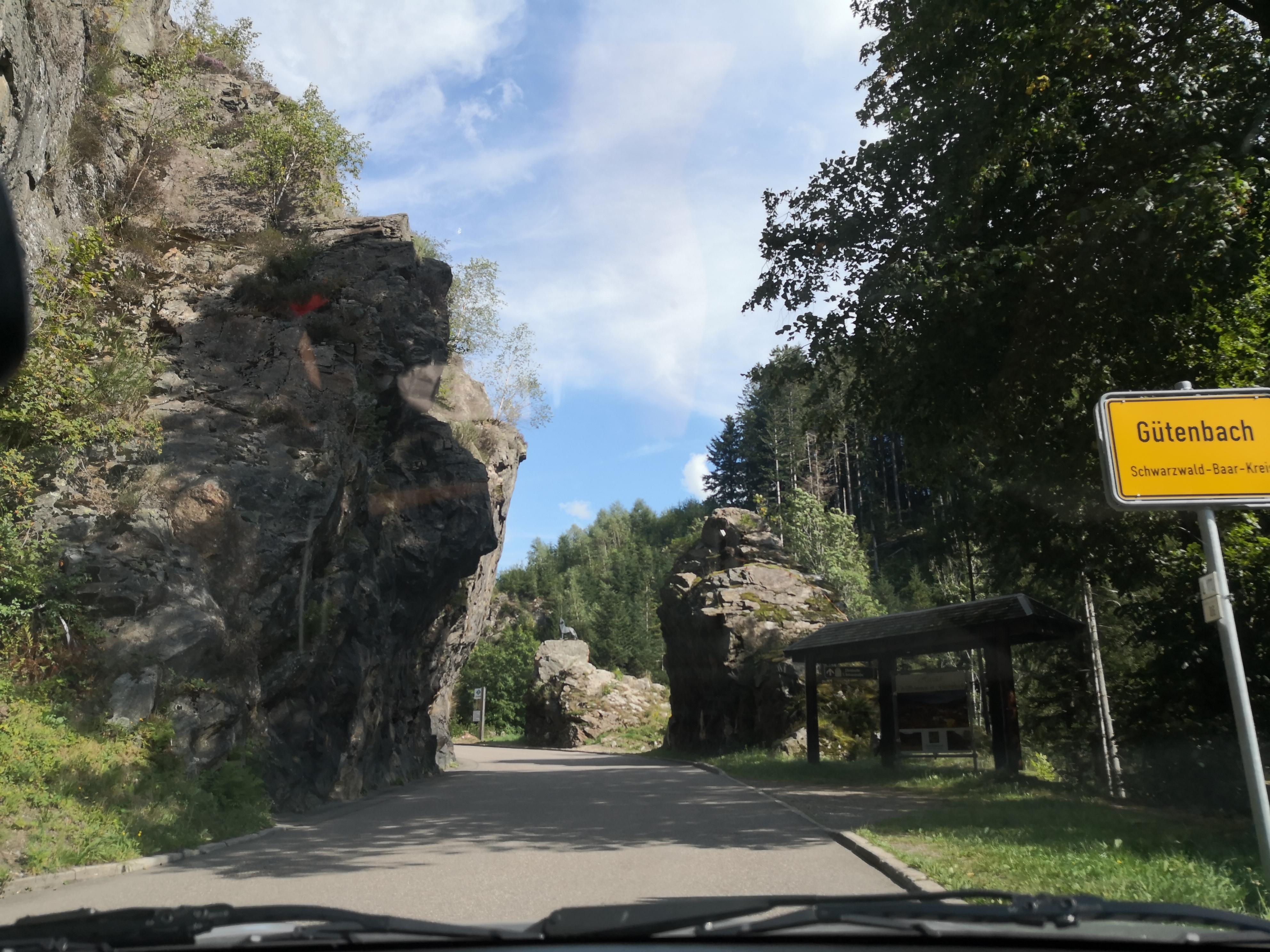 Abfahrt Ölmühle - Triberg Parkplatz (6)